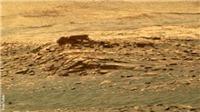 Giật mình với hình ảnh mới nhất về 'người ngoài hành tinh' trên Sao Hỏa