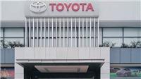 Toyota Việt Nam tạm ngưng sản xuất; xe đua nhau giảm giá mùa Covid-19