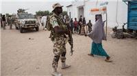 Quân đội Nigeria thông báo tiêu diệt ít nhất 17 tay súng thánh chiến trong một vụ giao tranh