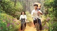 Liên hoan Phim Việt Nam XXII: Số lượng phim nhiều, hứa hẹn đột phá