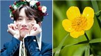 Tháng sinh của BTS thuộc bông hoa tượng trưng nào?