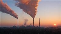 Hàng chục nghìn cư dân thành phố ở châu Âu tử vong sớm do không khí ô nhiễm