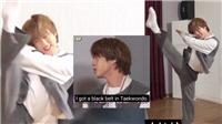 Những lần chứng minh Jin BTS sở hữu đai đen Taekwondo