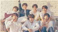 BTS thắng cách biệt trên BXH Danh tiếng tháng 5, công lớn nhờ Jimin
