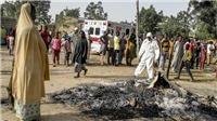 Nigeria: Phiến quân phục kích sát hại nhiều binh sĩ và dân thường