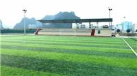 Sân cỏ nhân tạo có an toàn không?