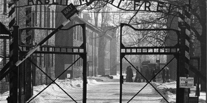 Tìm thấy 16.000 hiện vật về 1,1 triệu người Do Thái bị thiêu chết ở Auschwitz