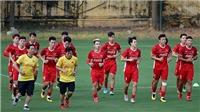 HLV Alfred Riedl: 'Tuyển Việt Nam có cơ hội vô địch AFF Cup'