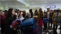 Sân bay Nội Bài tăng quầy phục vụ, điểm đỗ cho cao điểm Tết