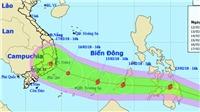 Bão Sanba khả năng sẽ đi vào Biển Đông ngày 30 Tết, miền Bắc nhiệt độ tăng dần