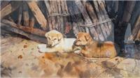 Độc đáo tranh 'chó' của 18 họa sĩ đương đại Việt Nam