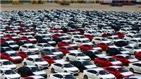 Hàng nghìn xe ô tô nhập khẩu từ Thái Lan thuế 0% xếp kín cảng Hải Phòng