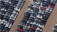 300.000 xe Audi, Lamborghini, Porsche phơi mình trong mưa nắng vì gian lận xả thải