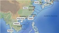 Sự cố cáp APG, internet Việt Nam đi quốc tế bị ảnh hưởng, mất nhiều tuần khắc phục