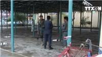 VIDEO: Đánh bom đẫm máu tại điểm bầu cử ở Afghanistan, 12 người thiệt mạng