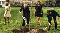 VIDEO: Cây sồi Tổng thống Pháp trồng tại Nhà Trắng bỗng nhiên 'mất tích'