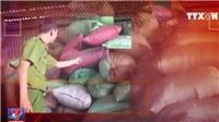 Kết luận thanh tra vụ trộn lõi pin vào phế phẩm cà phê tại Đắk Nông: Làm giả hồ tiêu đen
