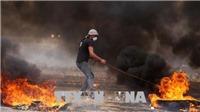 Xung đột tại Dải Gaza: 171 người thương vong