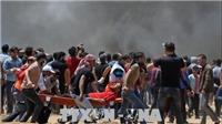 Em bé 8 tháng tuổi chết vì hơi cay của binh lính Israel ở Dải Gaza