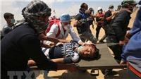 Palestine quyết định kiện Israel gây ra tội ác chiến tranh lên Tòa án Hình sự Quốc tế