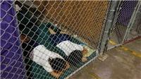 Sự thật về bức ảnh trẻ nhập cư trong chuồng sắt tại Mỹ