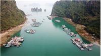 Phó Chủ tịch UBND thành phố Hạ Long: Không có việc 'ngăn sông cấm chợ'  trên vịnh Hạ Long