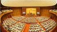 Trực tiếp Quốc hội chất vấn về quản lý đất đai và việc làm