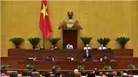 Bộ trưởng Bộ GD&ĐT Phùng Xuân Nhạ trả lời về giải thể đại học, bạo hành học sinh, sinh viên thất nghiệp...