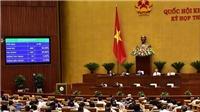 Luật An ninh mạng bỏ quy định đặt máy chủ tại Việt Nam