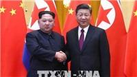 Nhà lãnh đạo Kim Jong - un gửi thư chúc mừng sinh nhật Chủ tịch Tập Cận Bình