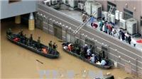 Hơn 140 người chết do mưa lũ ở Nhật Bản