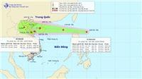 Áp thấp nhiệt đới liên tiếp xuất hiện trên Biển Đông, liệu sắp có bão?