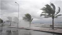 Chủ động ứng phó với bão số 3 và áp thấp nhiệt đới