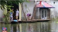 VIDEO Người dân Chương Mỹ chật vật xoay xở trong cảnh ngập lụt