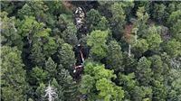 Tìm thấy mảnh vỡ của máy bay cứu hộ bị mất tích ở miền Trung Nhật Bản