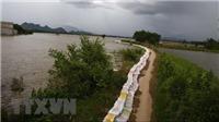 Hà Nội lập nhiều phương án chống bão số 4, giữ an toàn đê tả sông Bùi