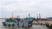 Tất cả tàu thuyền trên biển của tỉnh Thanh Hóa đã vào nơi tránh trú an toàn