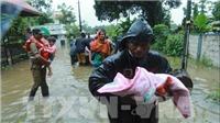 Thiên tai tại Nam Á cướp đi sinh mạng của hơn 1.200 người
