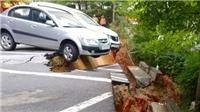 Hàn Quốc: Sơ tán hàng trăm người do hố sụt lún khổng lồ ở Seoul