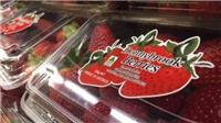 Chiếc kim khâu hủy hoại cả ngành công nghiệp trái cây tươi ở Australia