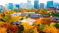 Những lễ hội mùa thu không thể bỏ qua ở xứ Hàn