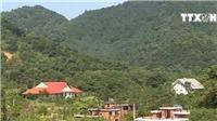 Băm nát rừng phòng hộ để xây biệt thự, lâu đài ở Sóc Sơn