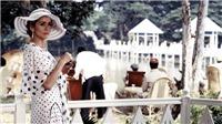 Ngôi sao phim 'Đông Dương' Catherine Deneuve: Huyền thoại ở tuổi 75