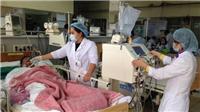 Hàng chục người tử vong và nhập viện do ngộ độc rượu gạo