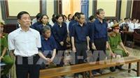 Xử phúc thẩm vụ thất thoát hơn 6.300 tỷ đồng tại Ngân hàng Đại Tín, Hứa Thị Phấn tiếp tục vắng mặt