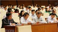 Kỳ họp thứ 6, Quốc hội khóa XIV: Thảo luận hai dự án Luật