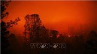 SỐC: Hơn 1.000 người Mỹ mất tích trong thảm họa cháy rừng ở California