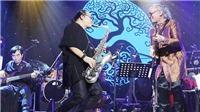 Liveshow - Sự 'trỗi dậy' của các nghệ sĩ dòng nhạc 'chính thống'