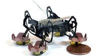 Robot tí hon của Đại học Harvard sẽ là trợ tá đắc lực đầy hứa hẹn