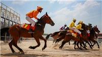 Bổ sung Dự án tổ hợp vui chơi giải trí đa năng - Trường đua ngựa vào Quy hoạch thành phố Hà Nội